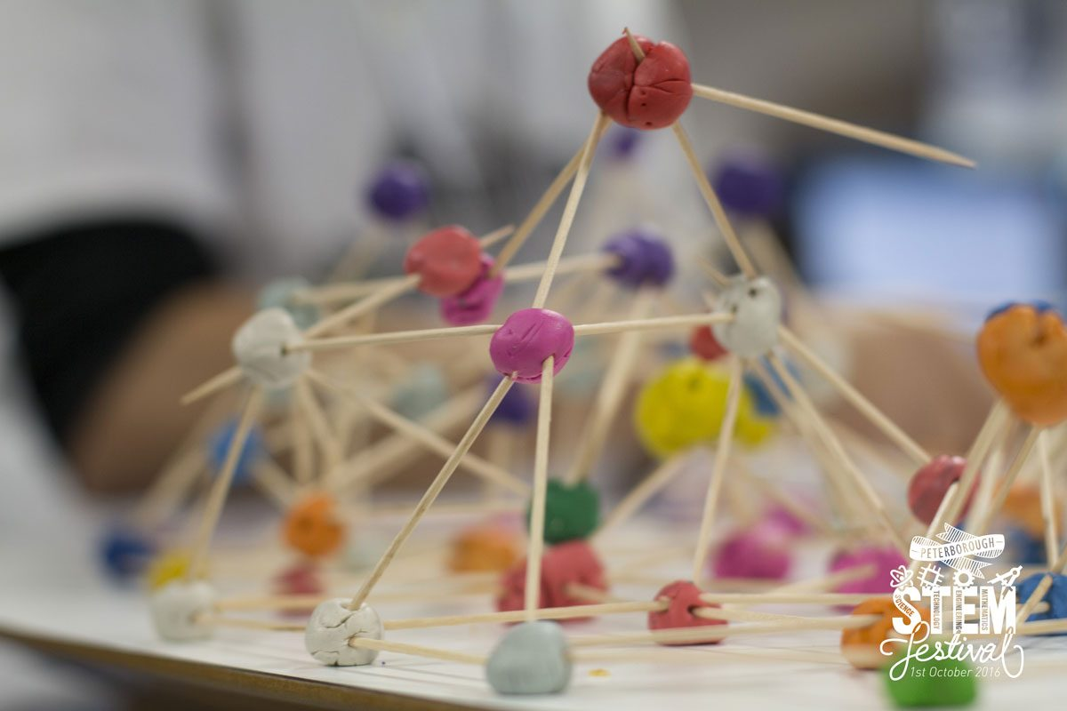 How to organise a STEM festival and still remain sane